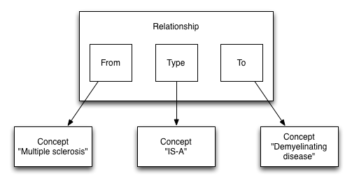 Snomed Relationship Structure